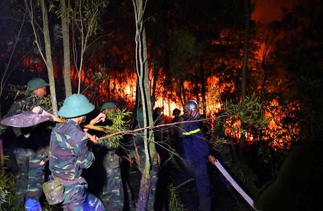 Hiện trường vụ cháy rừng lớn nhất lịch sử ở Sóc Sơn - 11