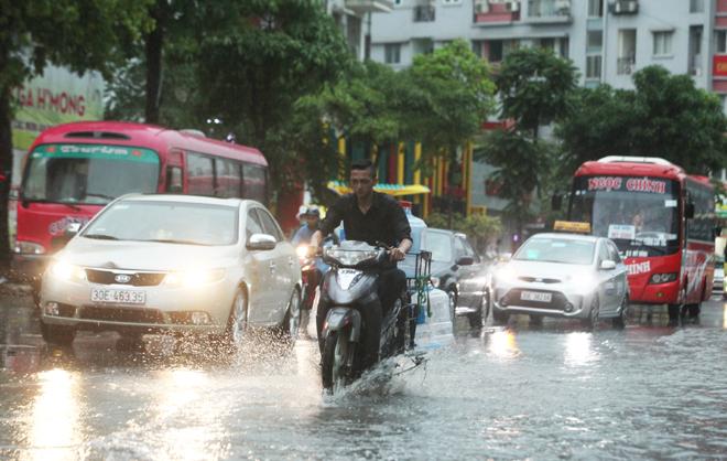 """Ảnh: Người Hà Nội sung sướng đi dưới """"mưa vàng"""" - 8"""