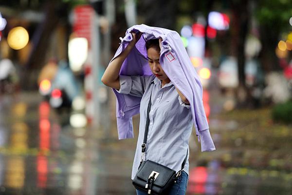 """Ảnh: Người Hà Nội sung sướng đi dưới """"mưa vàng"""" - 12"""