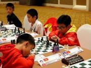Thể thao - Kỳ thủ nhí làm rạng danh cờ vua Việt