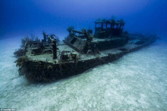 """""""Nín thở"""" đột nhập xác tàu đắm dưới đáy biển sâu - 10"""