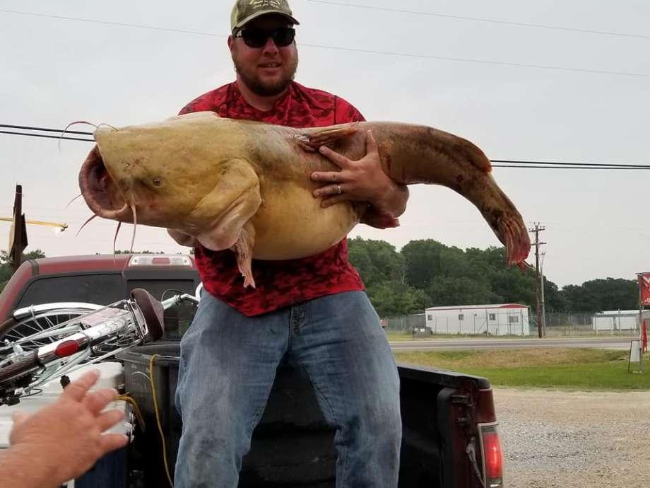 Dùng tay người làm mồi, bắt được cá trê khổng lồ nhất Mỹ - 1