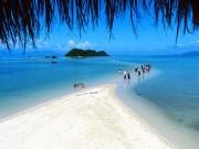 """Du lịch - Check-in tại """"thiên đường sống ảo"""" hot nhất Việt Nam"""