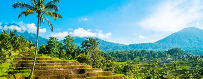 Hành trình khám phá Bali trong 48 giờ - 5