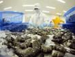 Australia nới lỏng lệnh tạm ngừng nhập khẩu tôm
