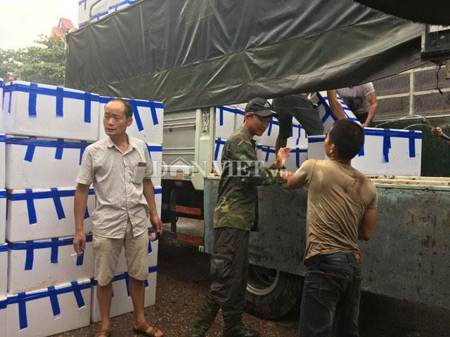 """""""Săn"""" thương lái Trung Quốc ở vựa vải thiều lớn nhất nước - 1"""
