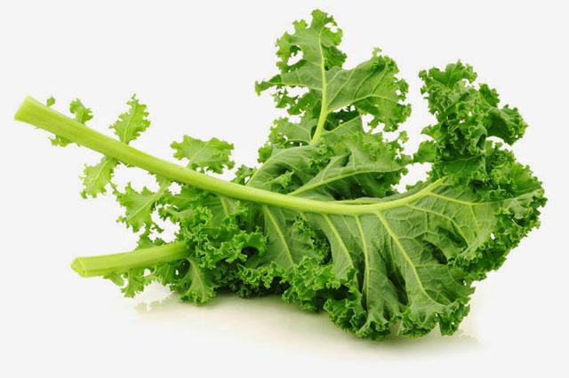 Những thực phẩm mà các nhà dinh dưỡng khuyên không chạm vào - 1