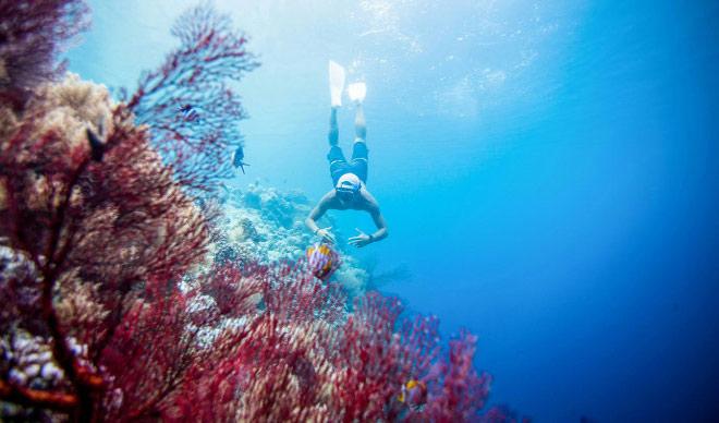 Xách ba lô lên và đi tìm hòn đảo huyền thoại mang tên Palau - 12