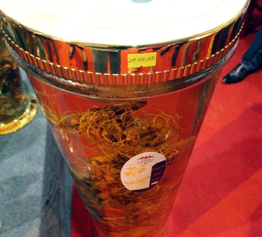 Bán được củ sâm giá 120 triệu đồng tại lễ hội sâm Ngọc Linh - 9