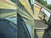 """Phi thường - kỳ quặc - Video: Rắn khủng """"bám"""" nóc capô dọa người trên cao tốc"""