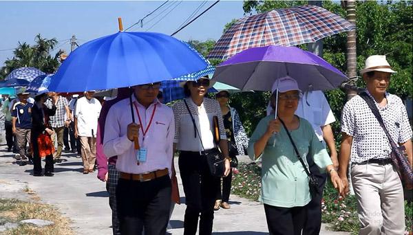 Giải mã viên uống hỗ trợ điều trị tiểu đường số 1 Việt Nam - 3