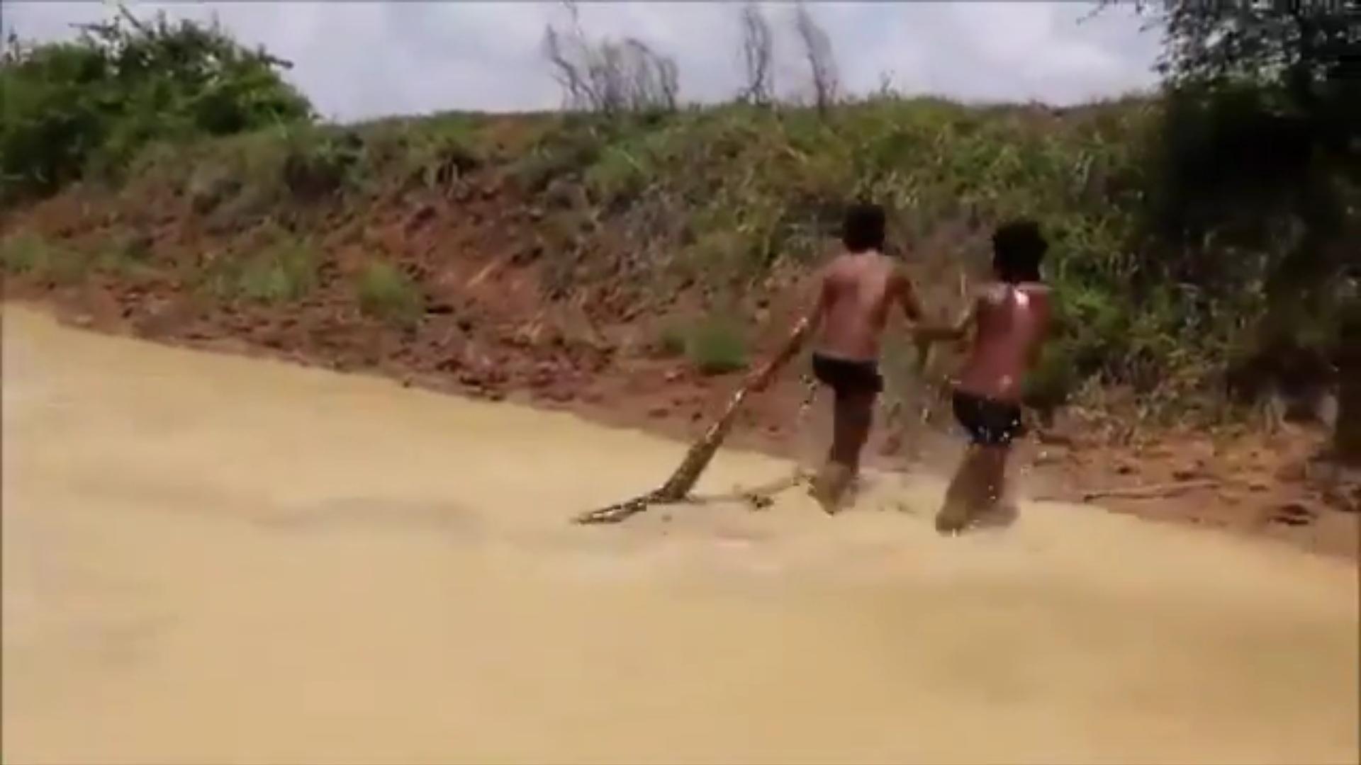 """Cậu bé dùng tay không bắt trăn """"khủng"""" dài 4m dưới sông - 1"""