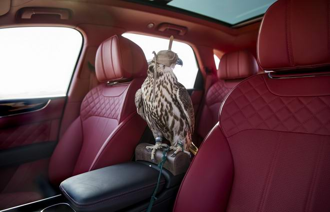 Bentley Bentayga Falconry: Cho nhà giàu sành chơi chim - 3
