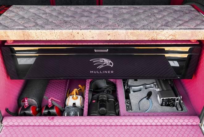 Bentley Bentayga Falconry: Cho nhà giàu sành chơi chim - 7