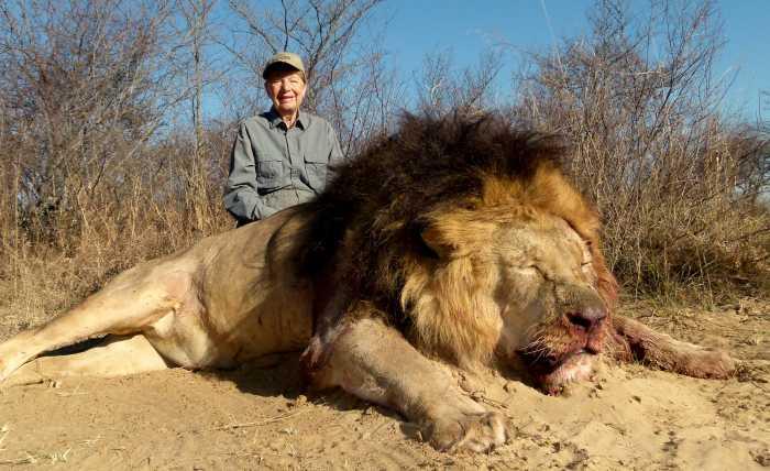 Đàn sư tử châu Phi tàn sát 1.500 người đẫm máu nhất lịch sử - 4