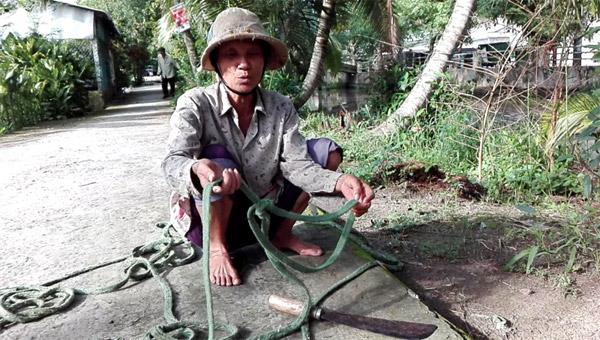 Chùm ảnh: Cụ bà 60 tuổi vẫn phải kiếm sống trên ngọn dừa - 2