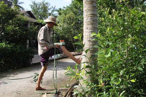 Chùm ảnh: Cụ bà 60 tuổi vẫn phải kiếm sống trên ngọn dừa - 3