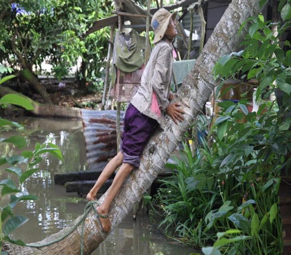 Chùm ảnh: Cụ bà 60 tuổi vẫn phải kiếm sống trên ngọn dừa - 8