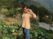 Kiếm tiền tỷ, vì sao Mỹ Linh, Thu Phương vẫn thích trồng rau, nuôi gà?