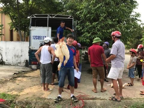 """Nghệ An: Xúm tay """"giải cứu' vịt cho nông dân, giá 70.000 đồng/con - 1"""