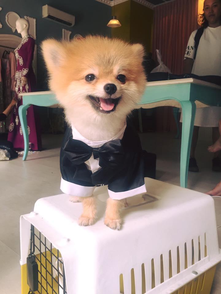 """Những cái nhất trong tiệc """"đính hôn hờ"""" của Kaity Nguyễn - 2"""