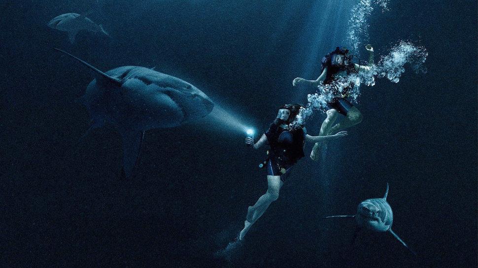 """Hai người đẹp """"chiến đấu"""" với đàn cá mập khiến khán giả rụng tim - 3"""