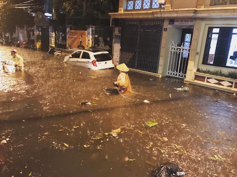 Cơn mưa làm ngập đường Hà Nội tối qua lớn cỡ nào? - 1