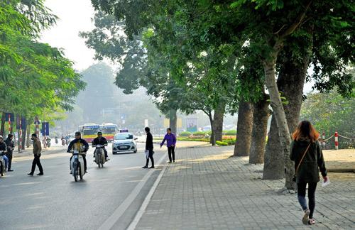 Những tuyến đường HN bị chặt cây xanh: Ngày ấy - Bây giờ - 9