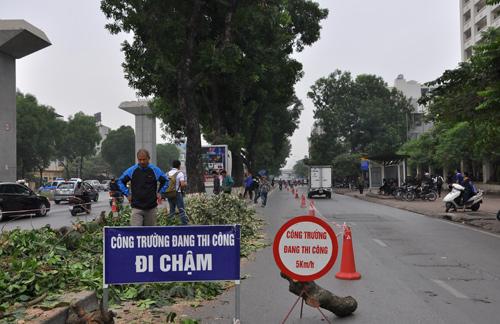 Những tuyến đường HN bị chặt cây xanh: Ngày ấy - Bây giờ - 11
