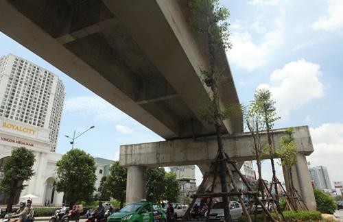 Những tuyến đường HN bị chặt cây xanh: Ngày ấy - Bây giờ - 17