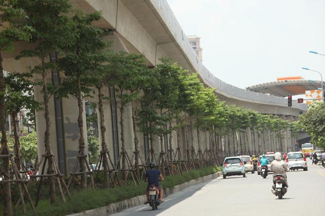 Những tuyến đường HN bị chặt cây xanh: Ngày ấy - Bây giờ - 20