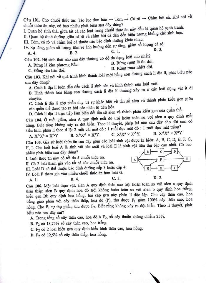 HOT: Gợi ý giải đề thi tốt nghiệp THPT Lý, Hóa, Sinh - 11