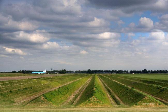 Công viên giảm tiếng ồn độc đáo ở sân bay Hà Lan - 1