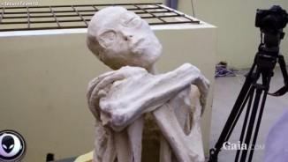 """Tìm thấy """"xác ướp người ngoài hành tinh"""" ở Peru"""