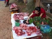 """Thị trường - Tiêu dùng - Sau 2 tháng giải cứu, người nuôi lợn vẫn """"thở ôxy"""""""