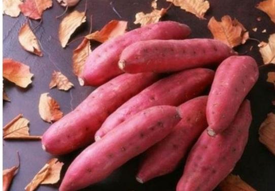 3 điều cấm kỵ khi ăn khoai lang mà bạn cần biết - 1