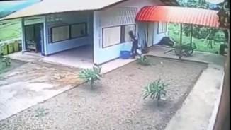 Đột nhập qua cửa sổ, tên trộm ê chề khi nhìn thấy điều này