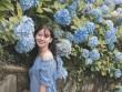 """""""Đứng ngồi không yên"""" trước vườn hoa cẩm tú cầu đẹp mê ly ở Cao Bằng"""