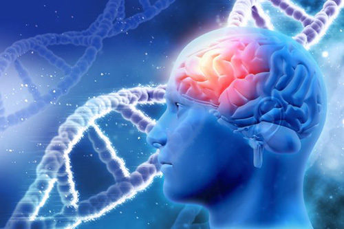 Acetylcholine – Bước đột phá mới trong điều trị suy giảm trí nhớ - 2