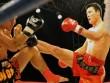 """Từ Hiểu Đông bị lừa, võ Trung Quốc loạn: """"Hổ báo"""" MMA xuất hiện"""