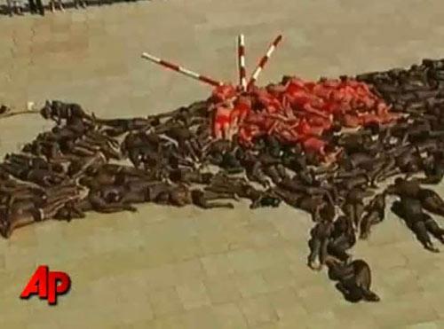 Video: Nude biểu tình chống đấu bò tót - 2