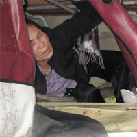 Vụ lật xe khách kinh hoàng ở Nghệ An