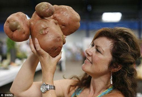 Củ cà rốt giống nhân vật Toy Story - 6