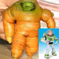 Củ cà rốt giống nhân vật Toy Story