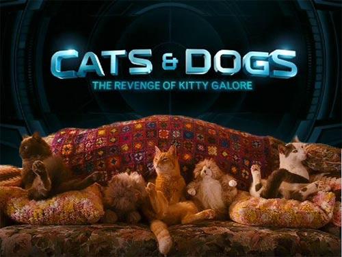 Phim mới: Đại chiến chó mèo - 5