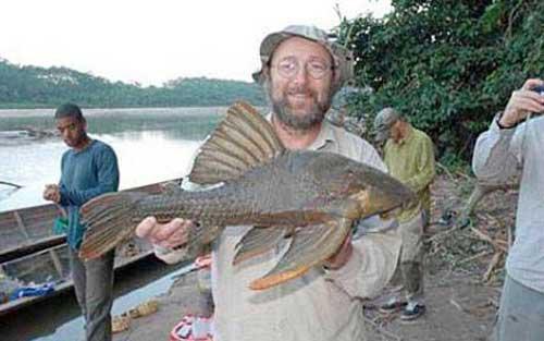 Phát hiện loài cá kỳ dị tại rừng Amazon - 1