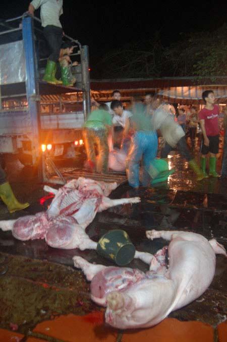 Cận cảnh lò giết mổ lợn giữa Thủ đô - 4