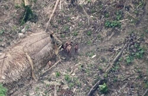 Phát hiện bộ lạc 200 người trong rừng Amazon - 1