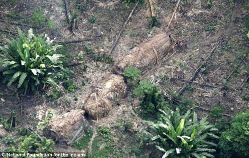 Phát hiện bộ lạc 200 người trong rừng Amazon - 3