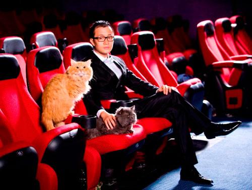 Lương Mạnh Hải, Hiếu Hiền tạo dáng với mèo - 5